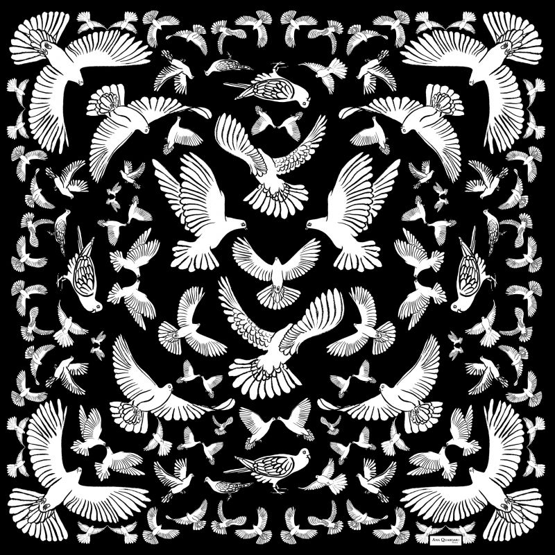Ana Quasoar Carré oiseau°1