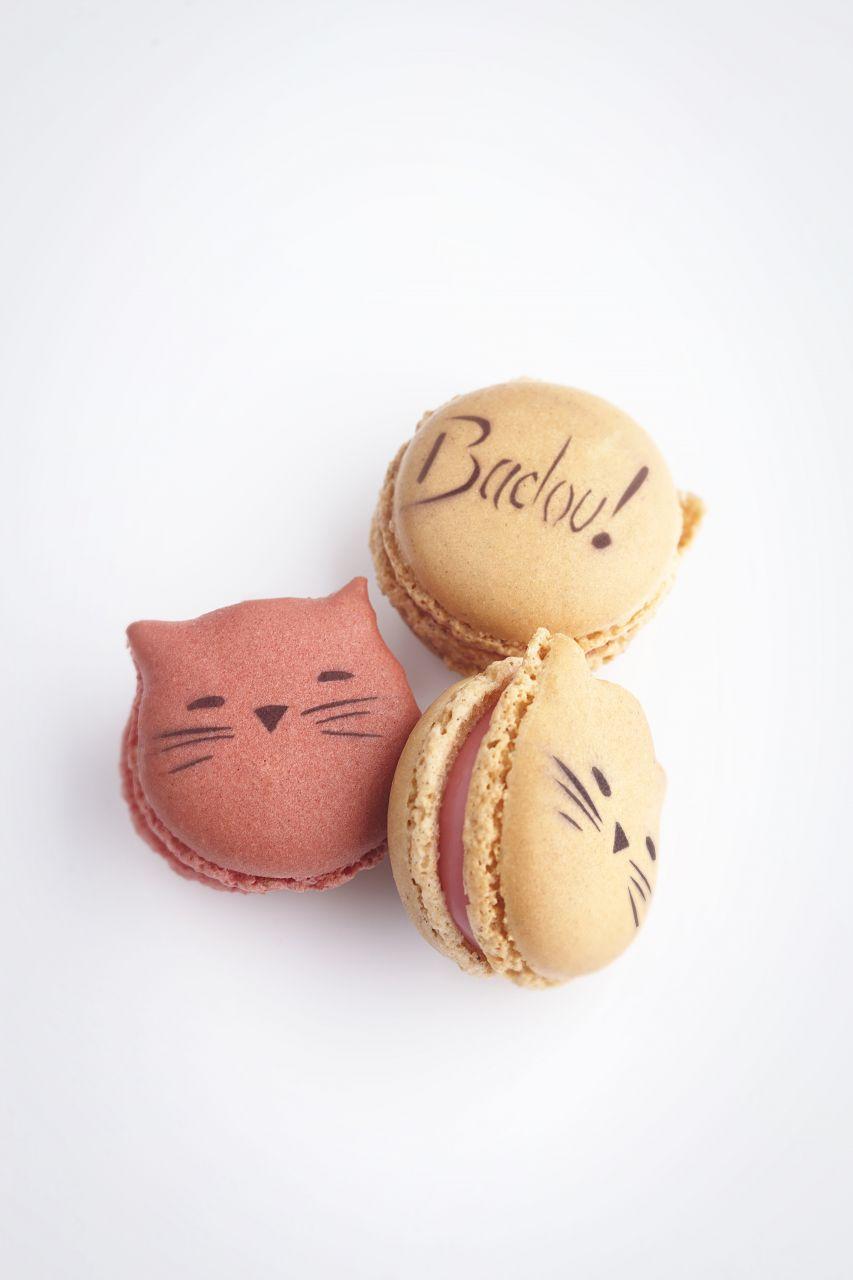 Packshot Macaron Badou by Lenôtre (c)T. DhellemmesLENOTRE_lamodecnous_la-mode-c-nous-lmcn_4