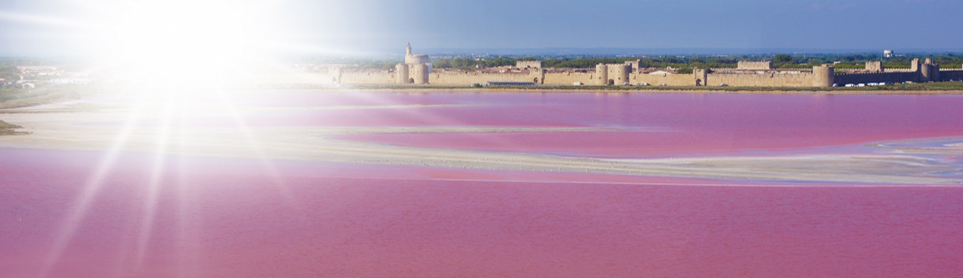 Eclae prodige des eaux roses