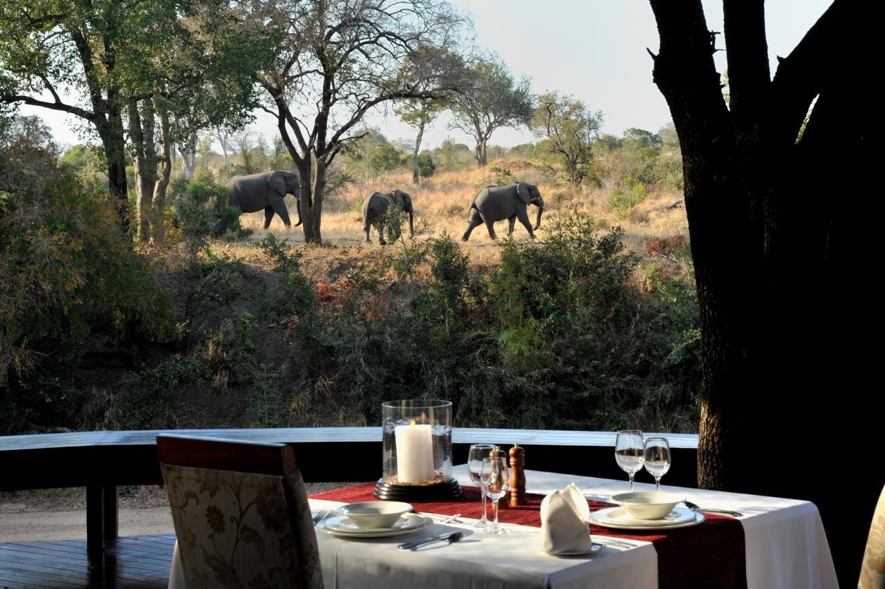 Booking.com-  6 destinations où s'engager pour la protection de la faune