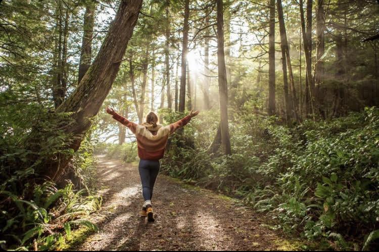 Lisa Intuitive – Guidance Intuitive, Energetique & Holistique